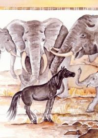 KALILA oder wie die Zebras zu ihren Streifen kamen